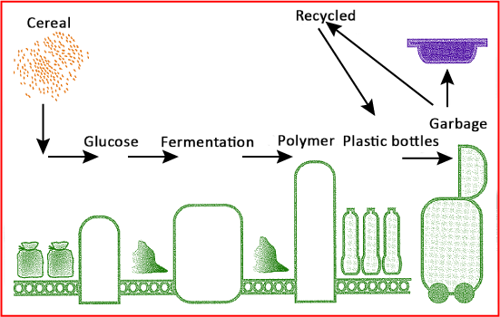 Life cycle of plastic