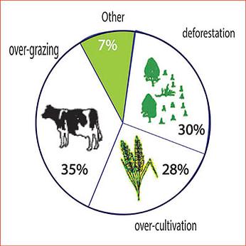 Causes of worldwide land degradation